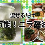 【アトピー簡単レシピ】混ぜるだけ☆万能!ニラ醤油