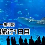 沖縄行ってきました。沖縄本島1日目【アトピー旅行記】