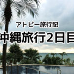 沖縄2日目・石垣島へ移動 ファーマーズマーケットで大興奮!【アトピー旅行記】