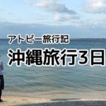 沖縄3日目・石垣島シュノーケリング・のりば食堂【アトピー旅行記】